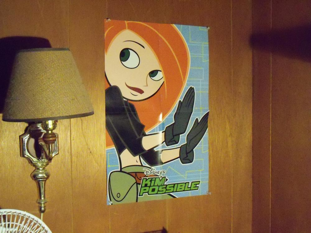 Name:  KP Poster on My Wall No Flash.jpg